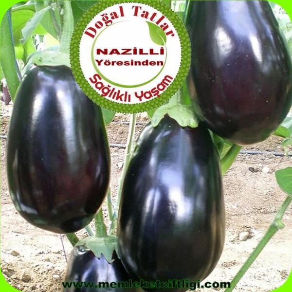 Doğal Dolmalık Patlıcan 1 Kg