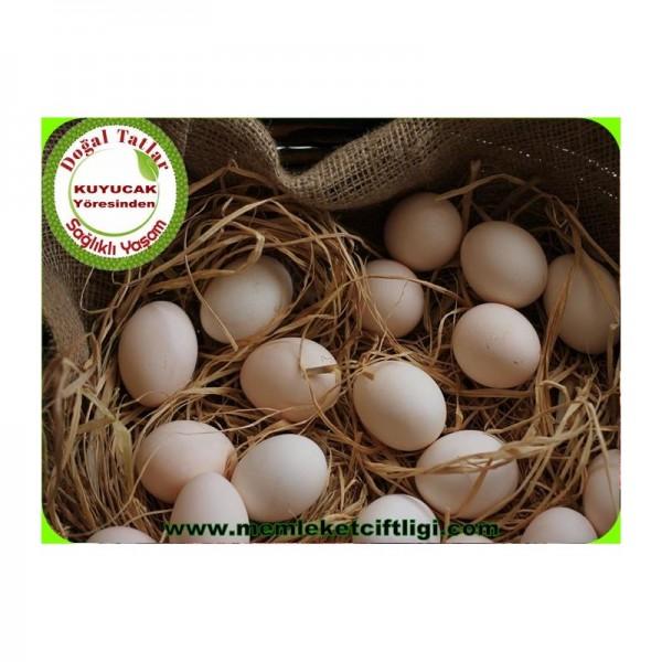 Doğal Köy Yumurtası 90 Adet