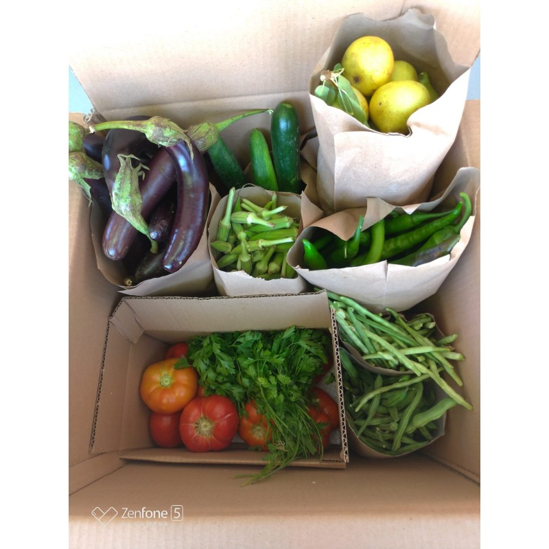Doğal Sebze -Meyve Sepeti (Aile Sepeti)