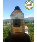 Doğal Damıtma Kekik Suyu 5 Lt (Pet Şişe)