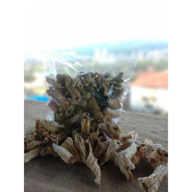 Kuru Kabak (Dolmalık )