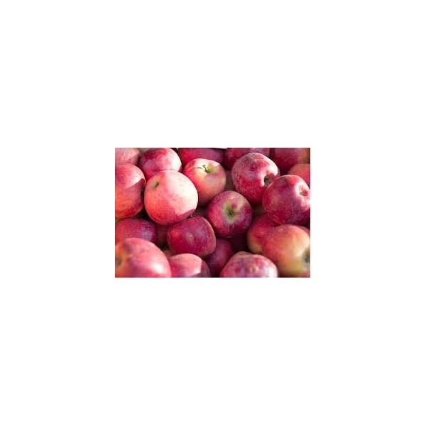 Kırmızı Elma Küçük Boy 1 Kg