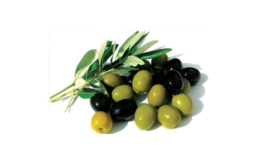 Doğal & Organik Zeytin - Zeytinyağı