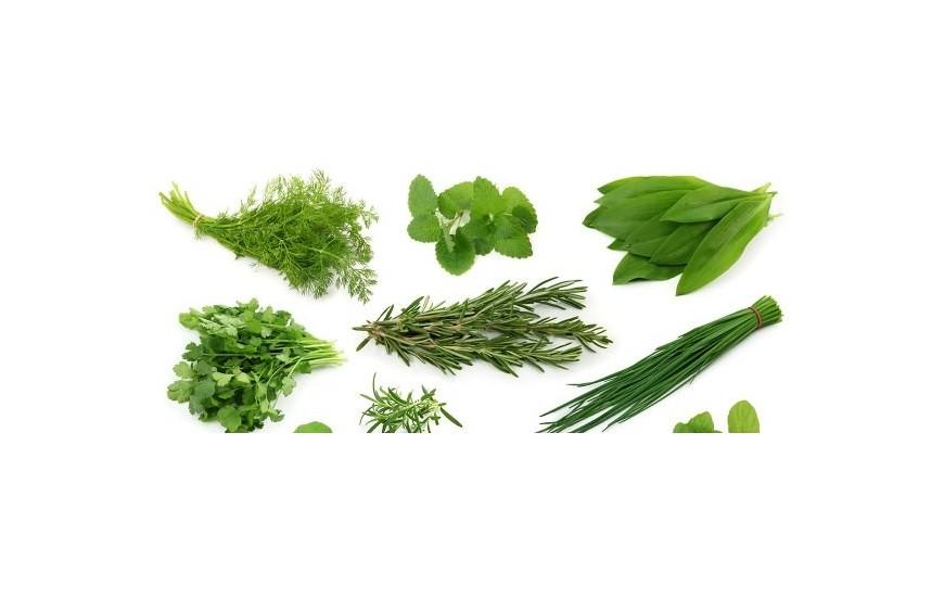 Doğal Otlar & Yeşillikler